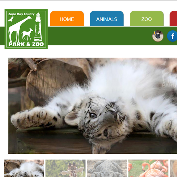 Cape May County Zoo Website Thumbnail Image